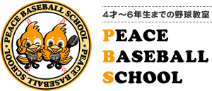 PEACE BASEBALL SCHOOL